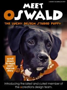 ocreations oswald ozzi jesse mader urban rock puppy